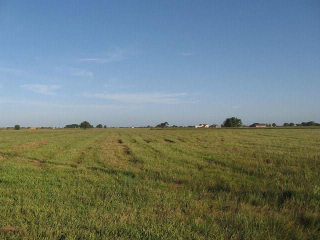 Lot 46 Apache Trail, Angleton, TX 77515 (MLS #83978570) :: The Johnson Team