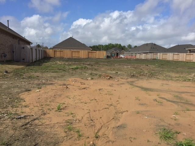 218 Brookwood Park Lane, Dickinson, TX 77539 (MLS #84360035) :: Christy Buck Team