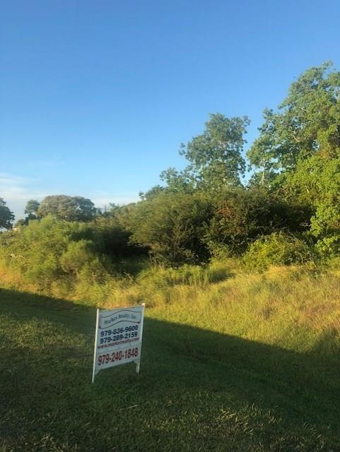0 Bayshore Boulevard, Collegeport, TX 77428 (MLS #8449793) :: Fairwater Westmont Real Estate