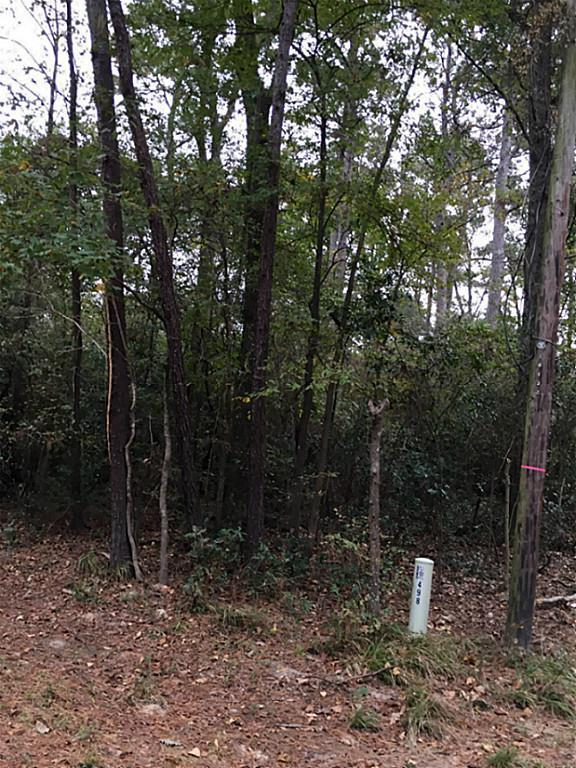 lot498 Forest, New Caney, TX 77357 (MLS #85040074) :: Texas Home Shop Realty