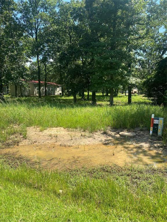 0 Acorn Lane Drive, Point Blank, TX 77359 (MLS #85377119) :: Keller Williams Realty