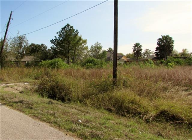 419 Ray Avenue, Arcola, TX 77583 (MLS #85595948) :: Giorgi Real Estate Group