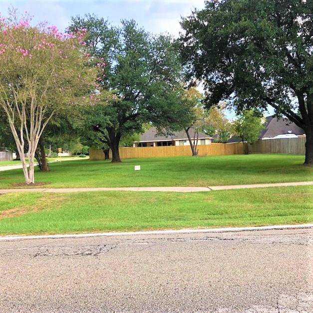 12014 Walden Road, Montgomery, TX 77356 (MLS #85851114) :: Christy Buck Team