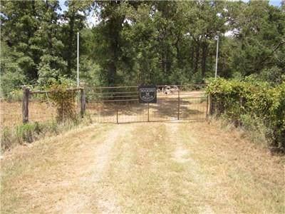 1682 Gotier Trace Road, Paige, TX 78659 (MLS #86102514) :: NewHomePrograms.com LLC