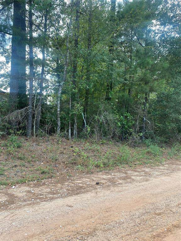 TBD Boys Camp Road, New Waverly, TX 77358 (MLS #86174663) :: The SOLD by George Team