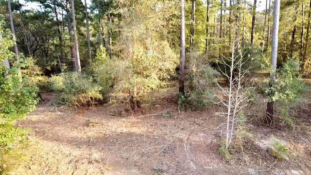 470 Pine Forest Acres Drive - Photo 1