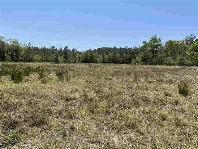 002 Michell Road, Orange, TX 77630 (MLS #87101724) :: Connect Realty