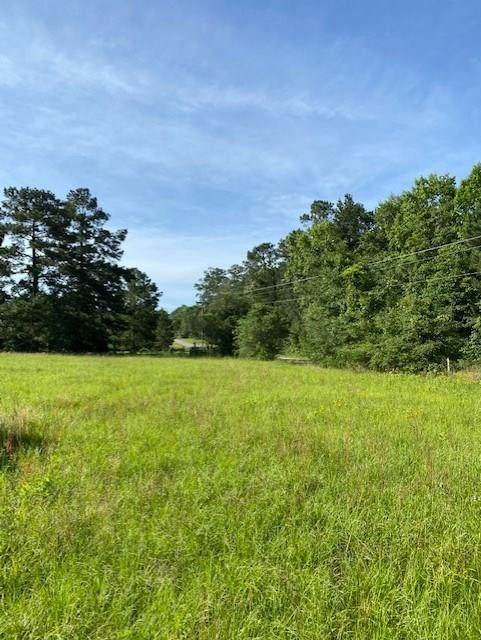 Lot 6 Cedar Lane Loop, Willis, TX 77378 (MLS #87129003) :: Guevara Backman