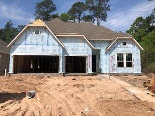 32193 Park Plains Drive, Spring, TX 77385 (MLS #87281501) :: Connect Realty
