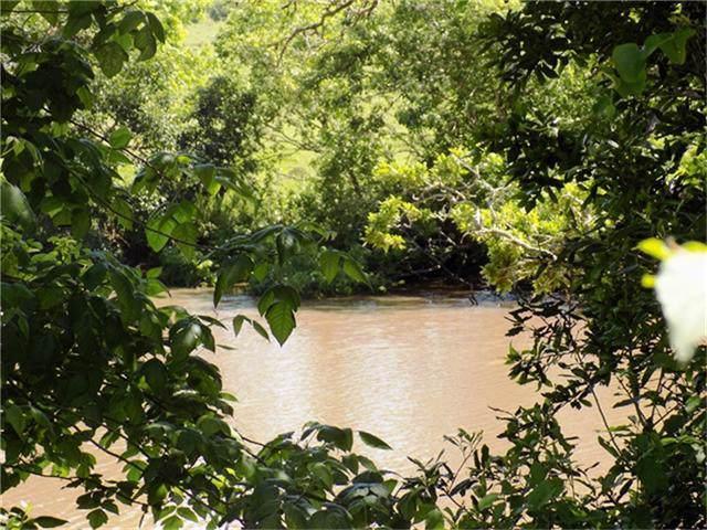 20 Creek 280 Creek View Road, Sargent, TX 77414 (MLS #87290814) :: The Sold By Valdez Team