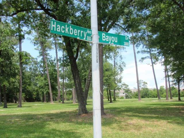 0 Hackberry Avenue, La Porte, TX 77571 (MLS #87319968) :: Texas Home Shop Realty