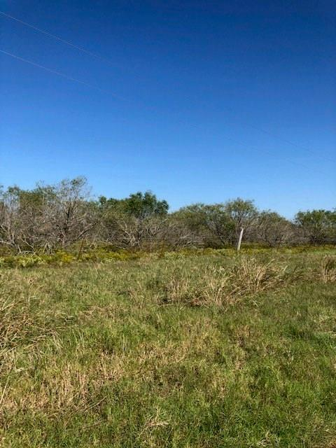 N/A County Road 130, Caldwell, TX 77836 (MLS #88159764) :: Connect Realty