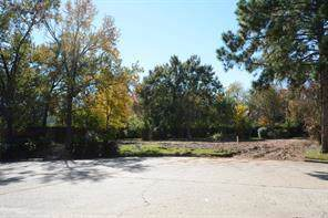 13107 Lookout Mountain Court, Houston, TX 77069 (MLS #88274617) :: NewHomePrograms.com LLC