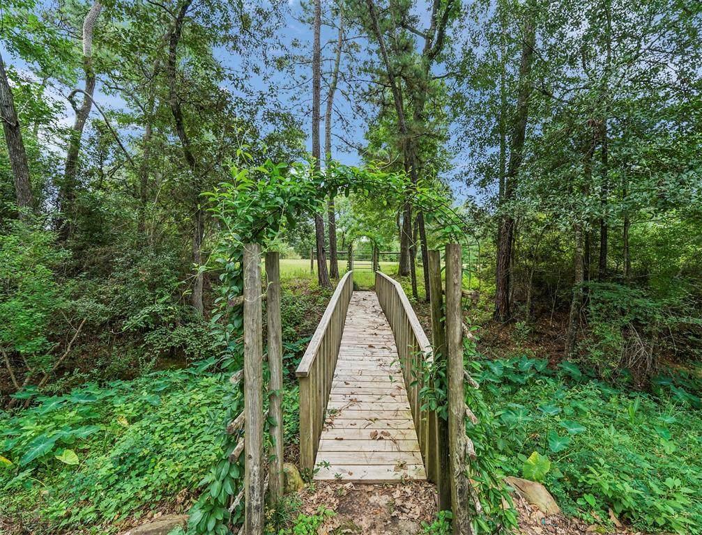 34005 Running Wood Court - Photo 1