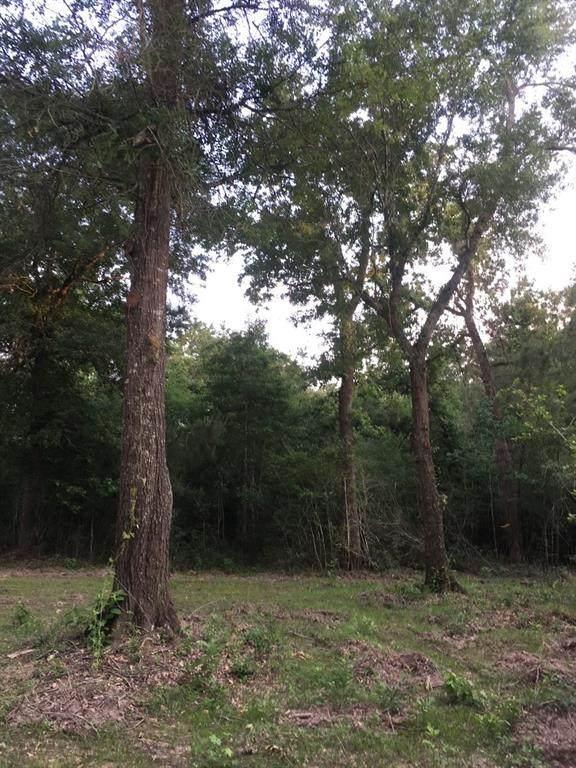 26170 Grand Pines Road - Photo 1