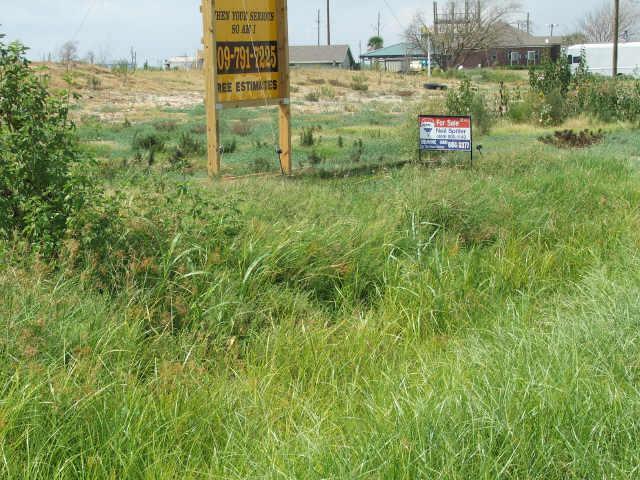 TR 206 Highway 87, Crystal Beach, TX 77650 (MLS #88551691) :: Texas Home Shop Realty