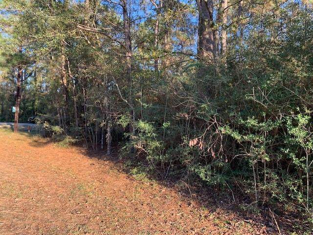Lot 111, Block 8 Clear Creek Forest Sec 11, Magnolia, TX 77355 (MLS #88655494) :: The Home Branch