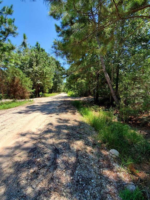 0 Squirrel Drive, Hempstead, TX 77445 (MLS #89098756) :: The Parodi Team at Realty Associates
