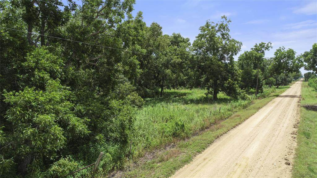 2187 County Road 448 Road - Photo 1