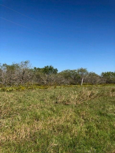 N/A County Road 130, Caldwell, TX 77836 (MLS #90308506) :: Texas Home Shop Realty