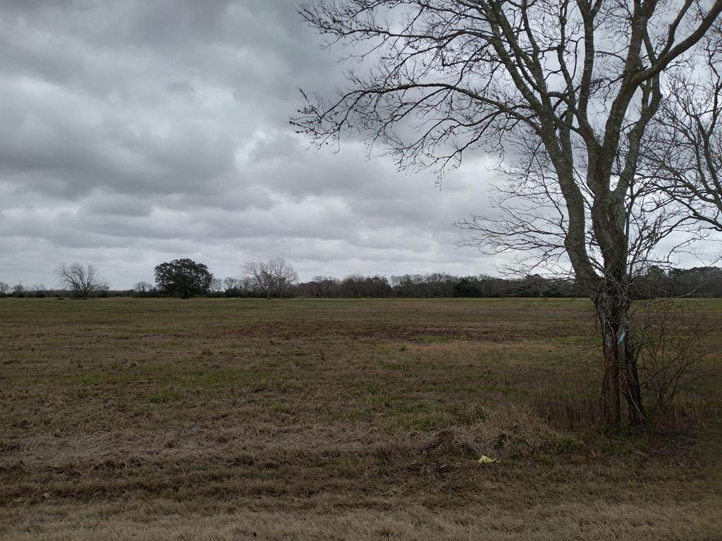 1803 County Road 773 - Photo 1