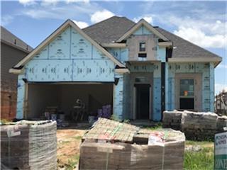 29143 Garden River Court, Fulshear, TX 77441 (MLS #90892440) :: Krueger Real Estate