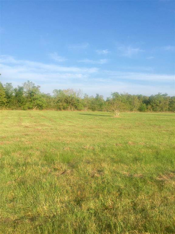 TBD County Road 947, Alvin, TX 77511 (MLS #91312146) :: Phyllis Foster Real Estate