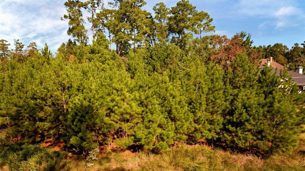 30 New Oak Trail - Photo 1