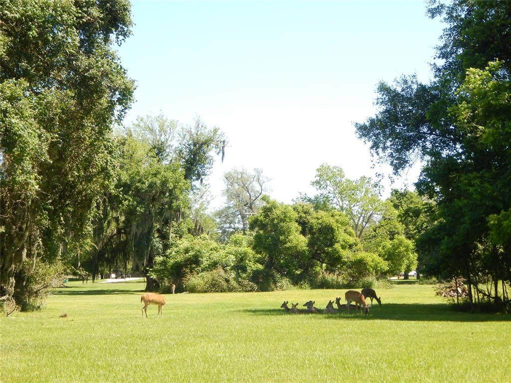 701/707 Rancho Chico Court - Photo 1