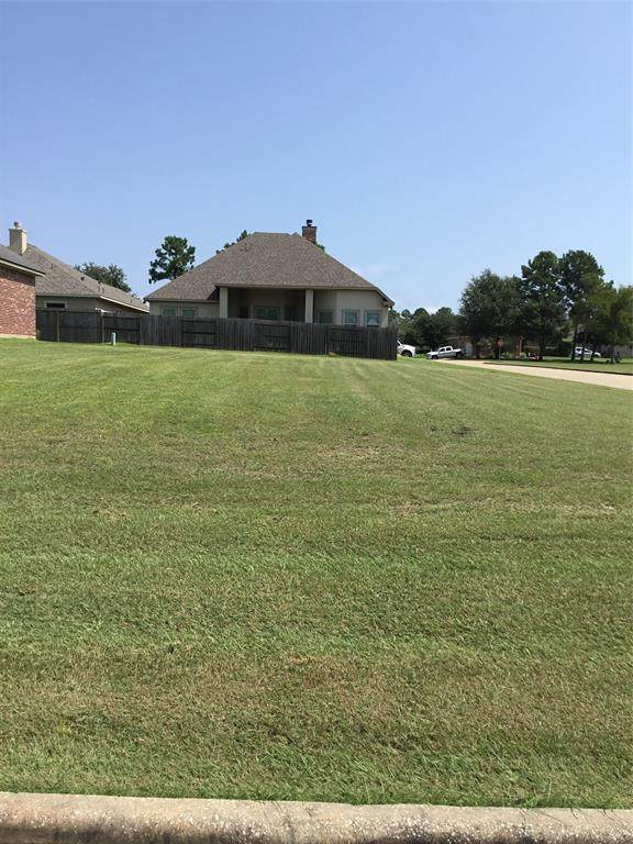 203 Hampton Glen, Montgomery, TX 77356 (MLS #91926595) :: The Andrea Curran Team powered by Compass