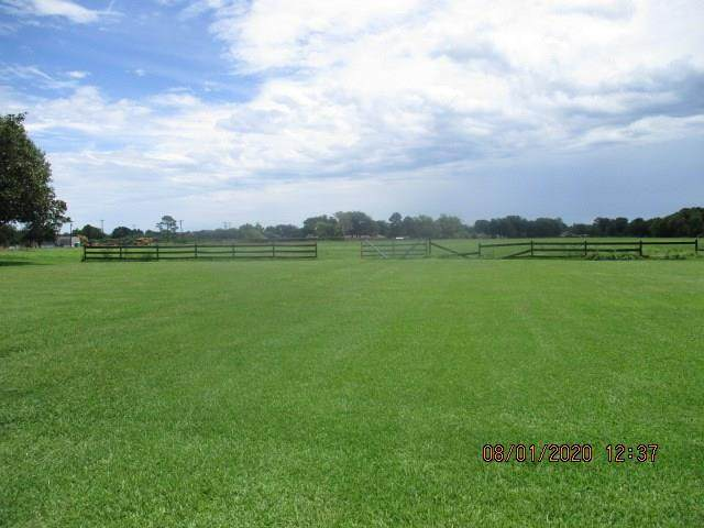 0 Buchta Road, Angleton, TX 77515 (MLS #92160770) :: The Heyl Group at Keller Williams
