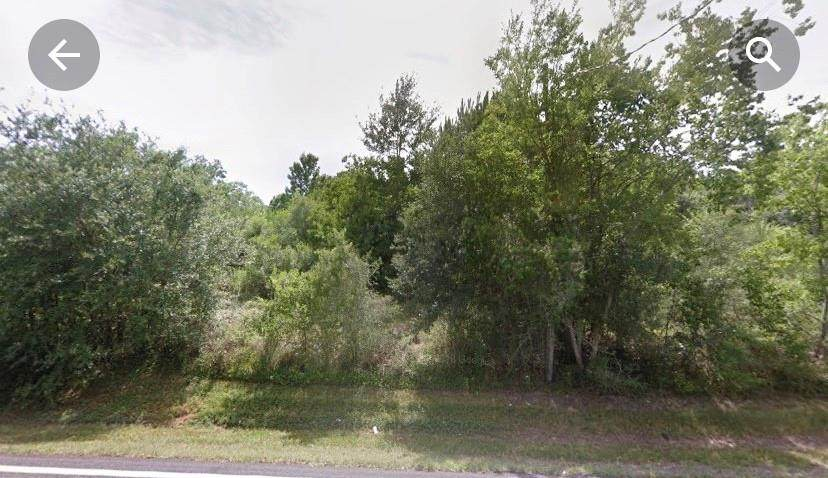 13813 Sralla Road - Photo 1