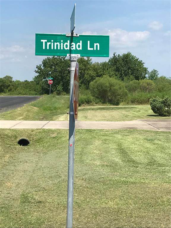 0 Trinidad Ln, Galveston, TX 77650 (MLS #92723682) :: Texas Home Shop Realty