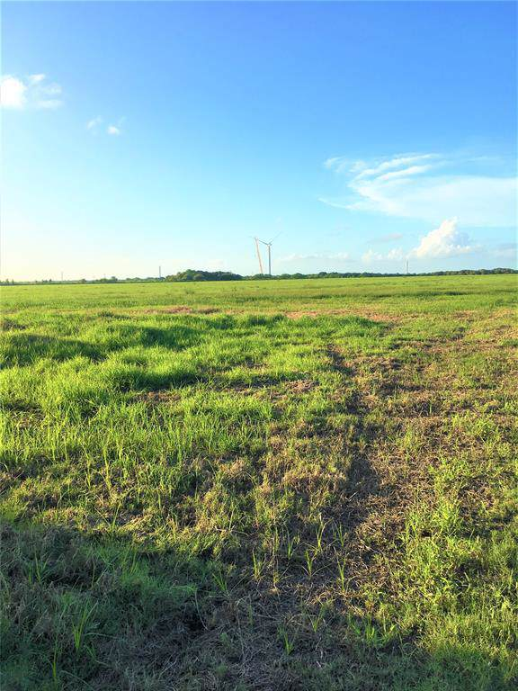 47.31 AC 0 Fm 521, Wadsworth, TX 77483 (MLS #9292441) :: The Sold By Valdez Team