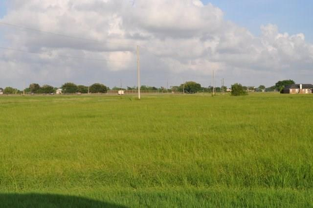 435 Buffalo Trail, Angleton, TX 77515 (MLS #93146939) :: The SOLD by George Team