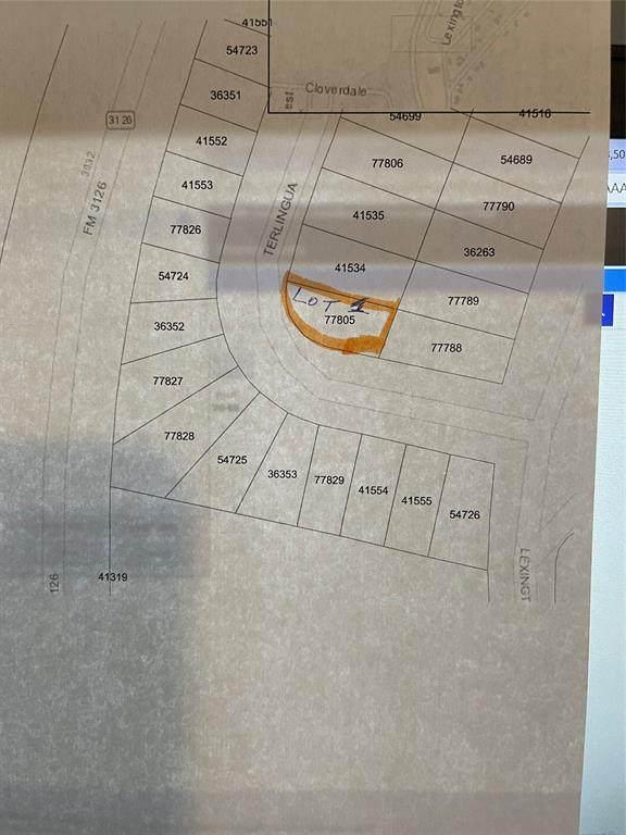 Lot 1 Terlingua, Livingston, TX 77351 (MLS #93419800) :: Connect Realty