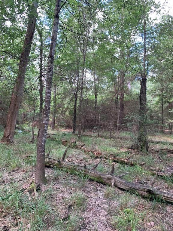 Tr 69 70 Scarlet Oak Trail Trail E, Conroe, TX 77385 (MLS #94712754) :: Lerner Realty Solutions