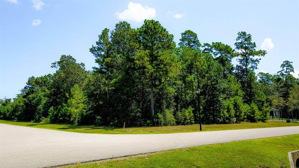 27411 Shady Hills Landing Lane - Photo 1