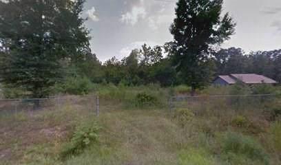 111 County Road 3665, Splendora, TX 77372 (MLS #9504502) :: Guevara Backman