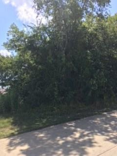 lot 103 Capetown Circle, Montgomery, TX 77356 (MLS #95054602) :: The SOLD by George Team