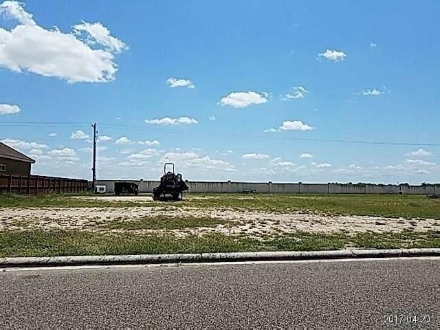 0 Bryan Loop, Rio Grande City, TX 78582 (MLS #95138106) :: Texas Home Shop Realty