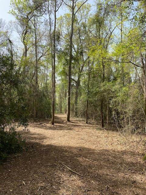 0 Mueschke Road, Hockley, TX 77377 (MLS #95348500) :: The Property Guys