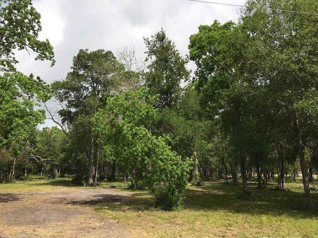 0 County Road 684B, Sweeny, TX 77480 (MLS #9545293) :: The SOLD by George Team