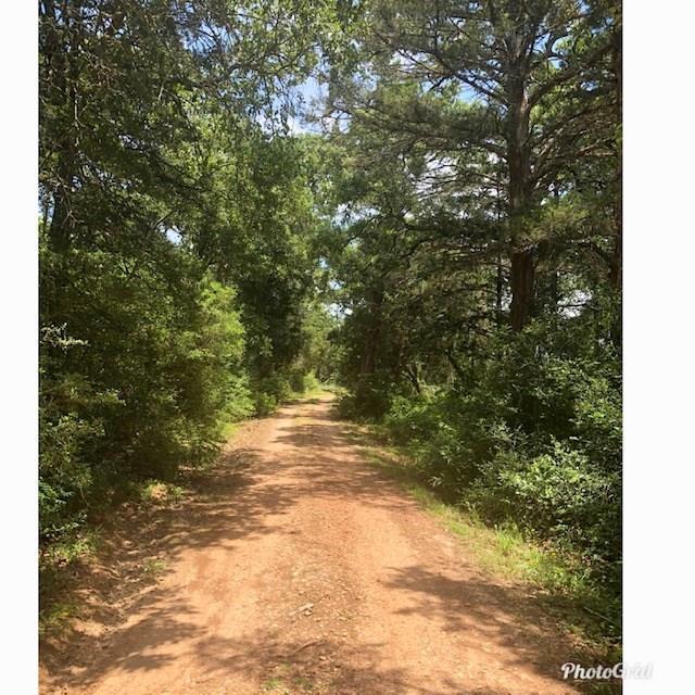 24042 Squirrel Road, New Ulm, TX 78950 (MLS #9552887) :: Magnolia Realty