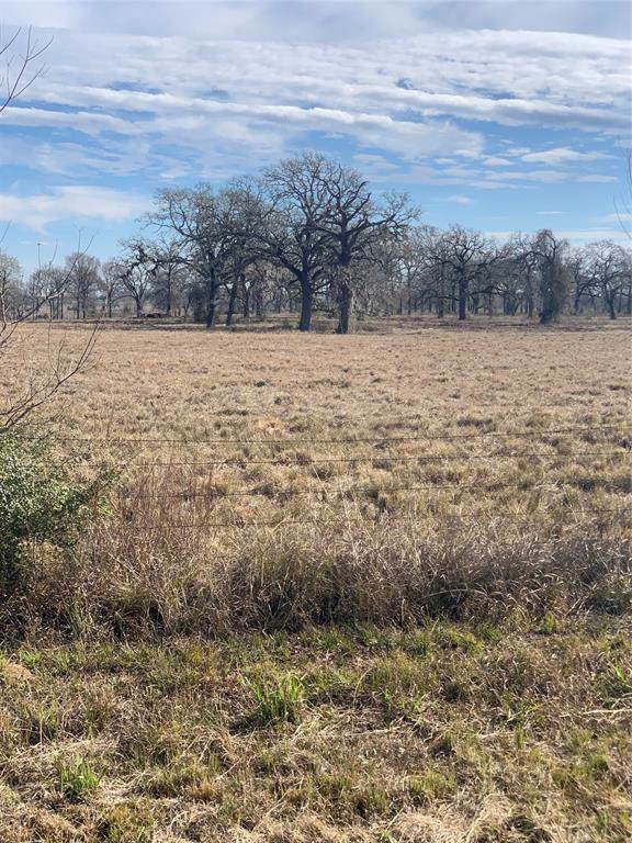 33017 Fm 1736/Waller Gladish Road Road, Field Store, TX 77484 (MLS #96265110) :: The Bly Team