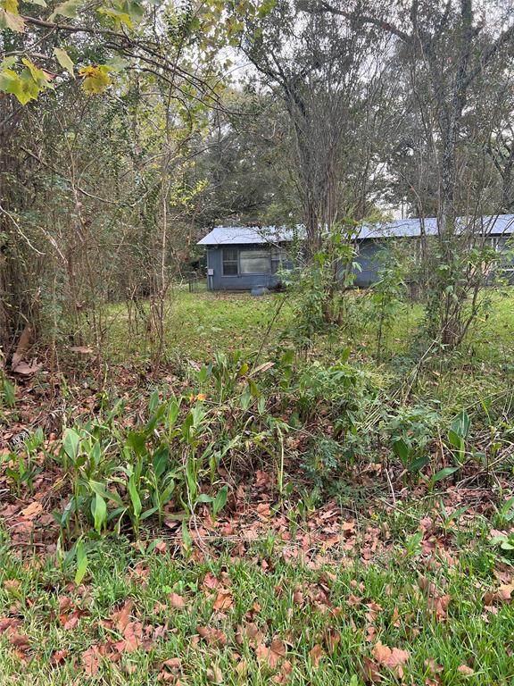 7750 Weeping Willow Lane, Plantersville, TX 77363 (MLS #96427747) :: Michele Harmon Team