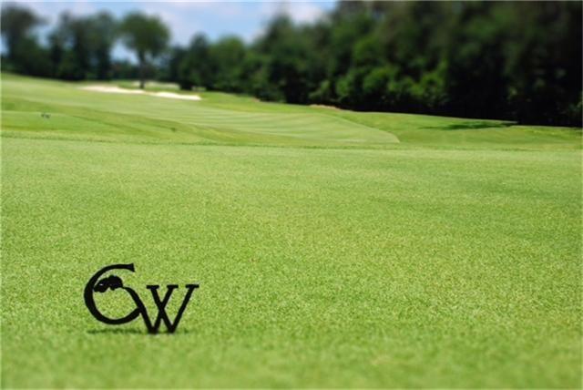 19 S Lamerie Way, The Woodlands, TX 77382 (MLS #96485221) :: Fairwater Westmont Real Estate