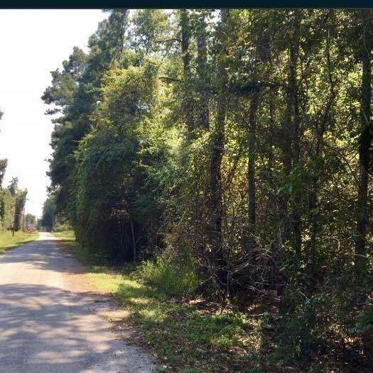 237 County Road 3669B - Photo 1