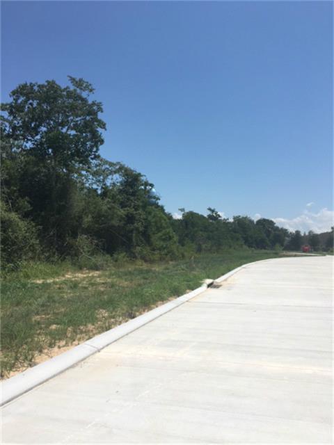 0 Wallington Lane, Seabrook, TX 77586 (MLS #97255103) :: Texas Home Shop Realty