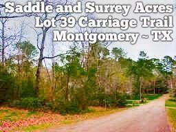 Lot 39 Carriage Trail, Conroe, TX 77316 (MLS #97634414) :: TEXdot Realtors, Inc.